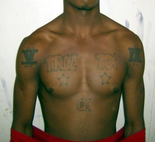 Stop Houston Gangs Report Gang Crime Tips Violence Texas Gangs