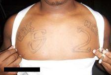 Stop Houston Gangs - Report Gang Crime Tips & Violence