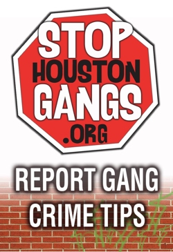 how to stop gang violence Preventing street gang violence important questions are raised what is the connection between street gangs and violence who is at greatest risk.